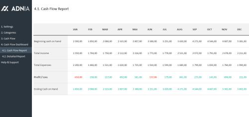 Cash Flow Management Template - Report