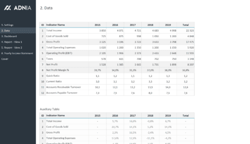 Yearly Financial Comparison Report Template - Financial Indicators